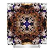 Mandala 17 Shower Curtain