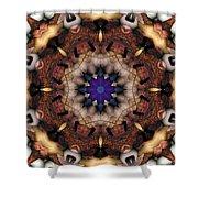Mandala 18 Shower Curtain