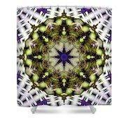 Mandala 21 Shower Curtain by Terry Reynoldson
