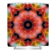 Mandala 91 Shower Curtain