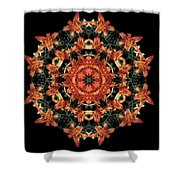 Mandala Daylily Shower Curtain