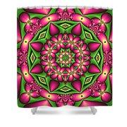 Mandala Green And Pink Shower Curtain