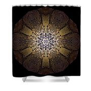 Mandala Sand Dollar At Wells Shower Curtain