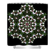Mandala Trillium Holiday Shower Curtain