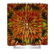 Mandala Vairocana Shower Curtain