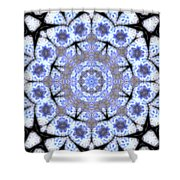 Mandala101 Shower Curtain