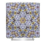 Mandala79 Shower Curtain