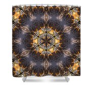 Mandala87 Shower Curtain