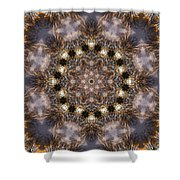 Mandala88 Shower Curtain