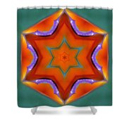 Mandala91 Shower Curtain