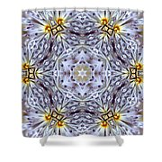 Mandala94 Shower Curtain
