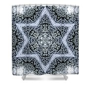 Mandala95 Shower Curtain