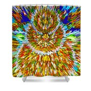 Mandalas Of The Buddha Shower Curtain