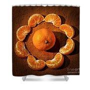 Mandarin - Vignette Shower Curtain by Kaye Menner