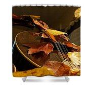 Mandolin Autumn 3 Shower Curtain