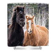 Manes Flying Shower Curtain