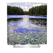 Manet's Inspiration Shower Curtain