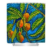 Mangoes Delight Shower Curtain