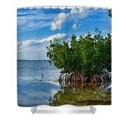 Mangrove Shower Curtain