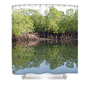 Mangrove Refelections Shower Curtain