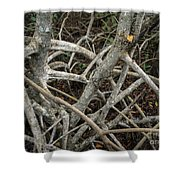 Mangrove Roots 1 Shower Curtain