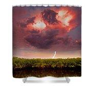 Mangrove Storm Shower Curtain