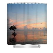 Mangrove Tree In Water At Sunrise Shower Curtain