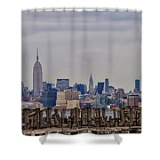 Manhattan View Shower Curtain
