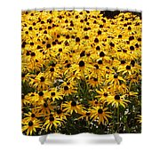 Many Yellow Blooms Shower Curtain