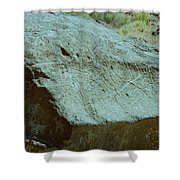 Map Rock Shower Curtain