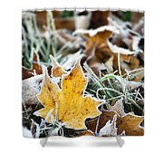 Maple Frost Leaf Art Shower Curtain