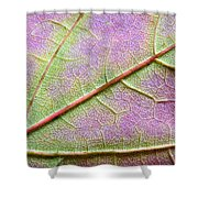 Maple Leaf Macro Shower Curtain