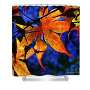 Maple Leaf Tracery Shower Curtain