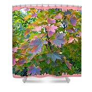 Maple Magnetism Painting Shower Curtain