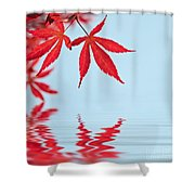 Maple Reflection Shower Curtain