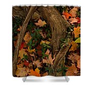 Maple Root Shower Curtain