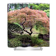Maple Tree Shower Curtain