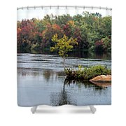 Maple Tree On A Rocky Island Shower Curtain