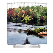 Maple Tree On A Rocky Island - V2 Shower Curtain