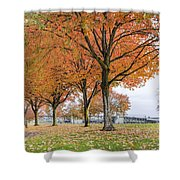 Maple Trees In Portland Downtown Park In Fall Shower Curtain