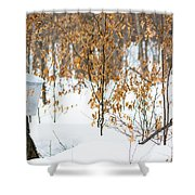 Maple Woods Shower Curtain