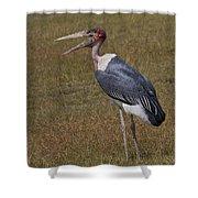 Marabou Stork   #0176 Shower Curtain