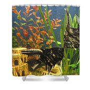 Marble Angelfish Kisses Shower Curtain