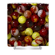 Marble Collection 19 Shower Curtain