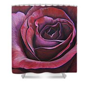 March Rose Shower Curtain