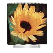 Marigold Impressions Shower Curtain