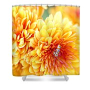 Ailanthus Webworm Visits The Marigold  Shower Curtain
