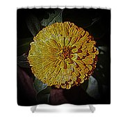 Marigold Digitized Shower Curtain