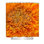 Marigold Marcro Shower Curtain