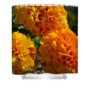 Marigold Mops Shower Curtain